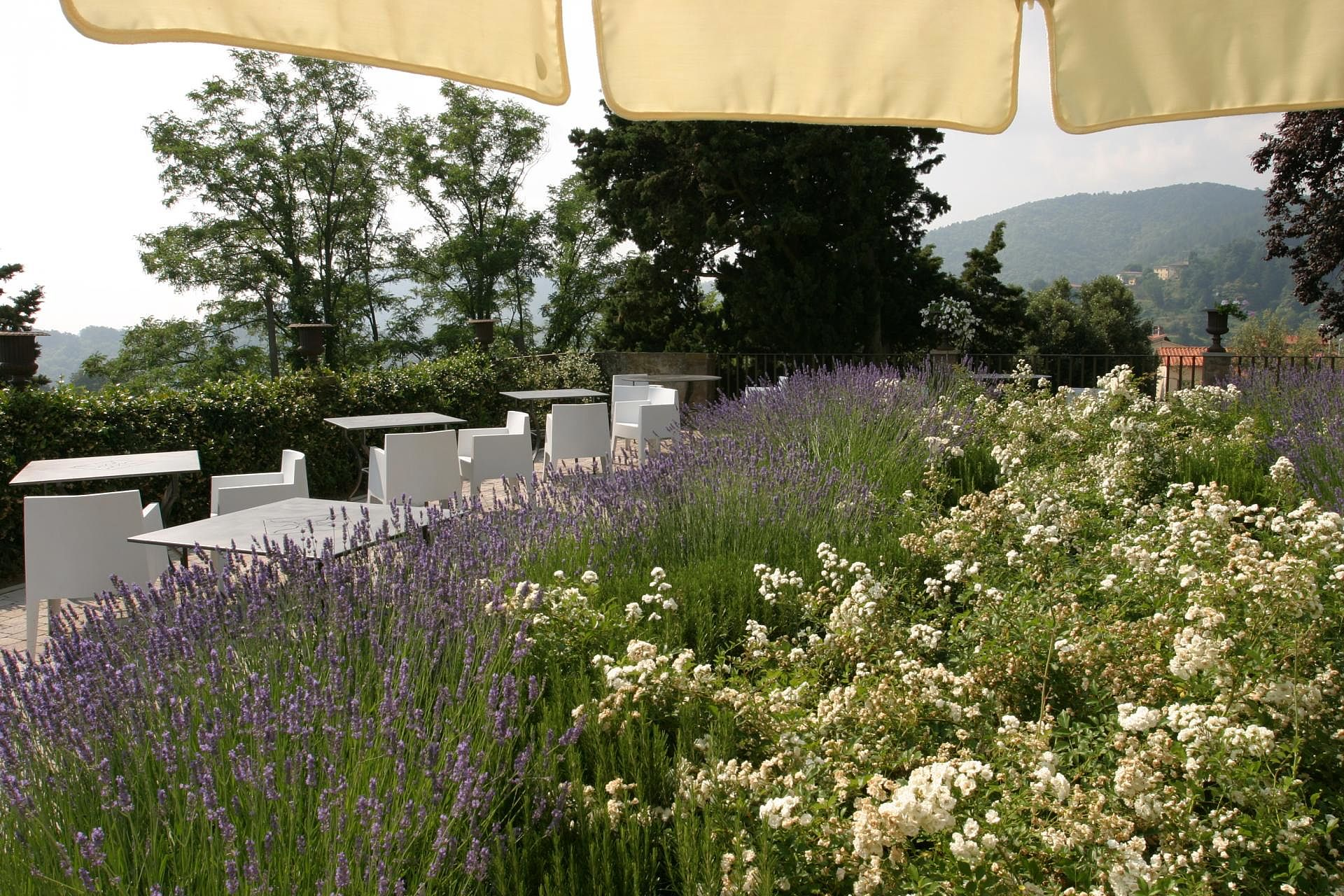 Villa sassolini toskana online zum bestpreis buchen for Designhotel toskana