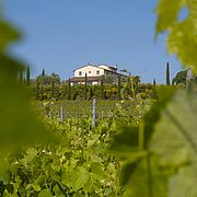 Wine Resort & Spa Le Buche
